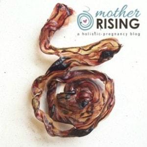 placenta encapsulation cord