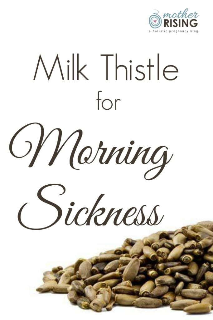 Milk Thistle Pregnant 10