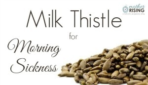 Milk Thistle for Morning Sickness | Mother Rising