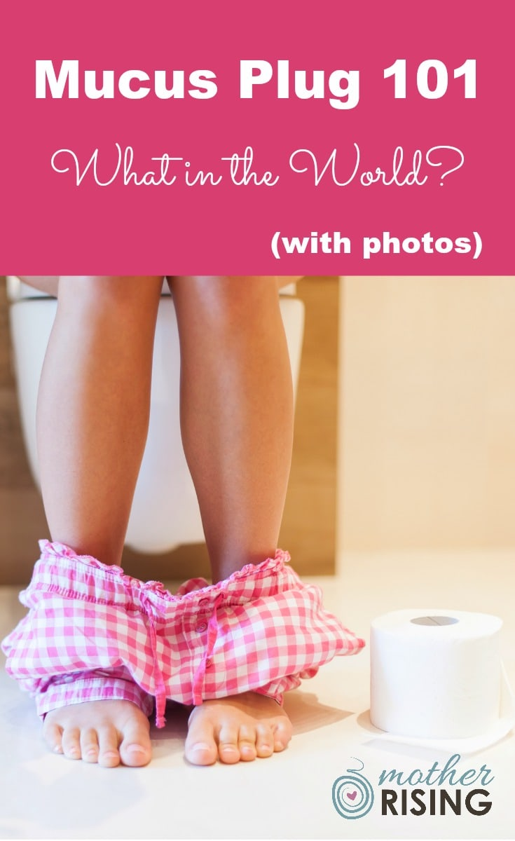 In this post we will discuss everything one needs to know about the mucus plug. I hope you have a strong stomach, as I've included photos. Click at your own risk. ;)