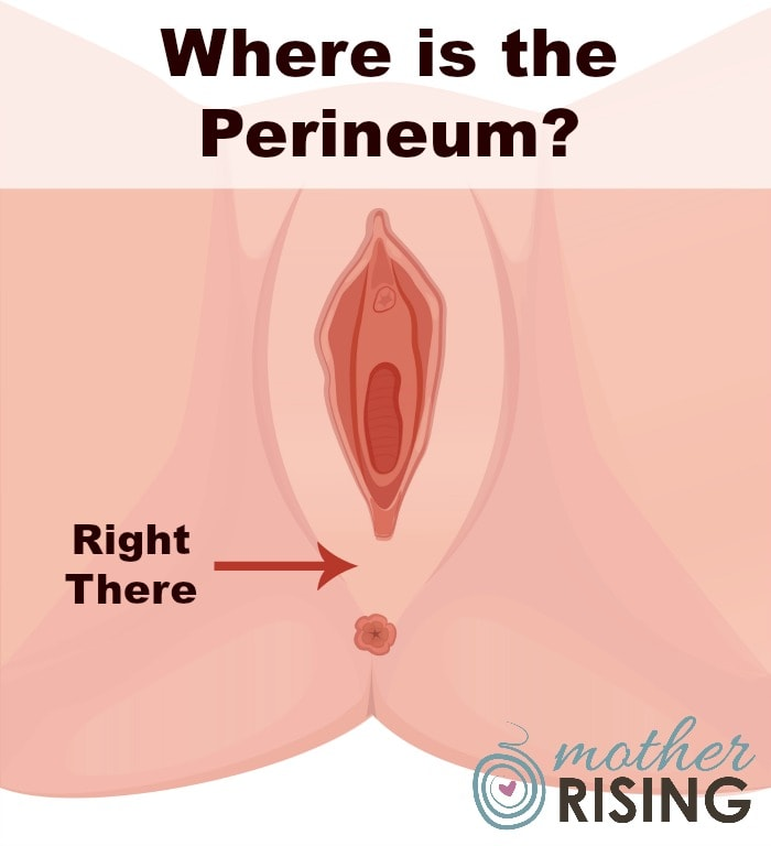 Stop! Perineal Massage Is Not What You Think! | Mother Rising